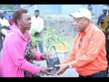 Agriculture Minister Derrick Kellier presenting a coffee seedling to a farmer in Mavis Bank, St Andrew, last week.